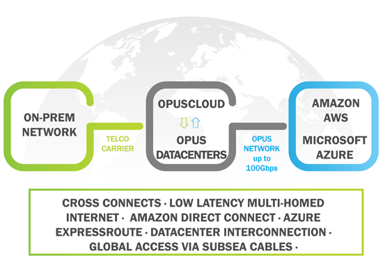 Network Connectivity with Opus Interactive